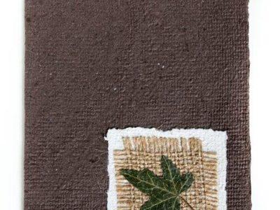 Edera [collage di edera e sacco su biglietto in carta riciclata] - 2,40€